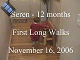2006-11-16.playtime.baby_12_months.first_long_walks.seren-snyder.video.720x480-72meg.livonia.mi.us.mpg