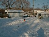 1999-01-17.schone.winter.backyard.4.redford.mi.us.jpg