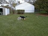 2003-00-00.reisa-sidnee.playing.rope.1.redford.mi.us.jpg