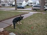2003-00-00.reisa.outside.1.redford.mi.us.jpg