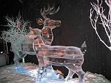 2007-12-23.ice_sculpture_show.gaylord_palms.04.orlando.fl.us.jpg
