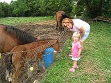2008-07-04.deer_run_stables.15.nessa-seren-snyder.richmond.ky.us.jpg
