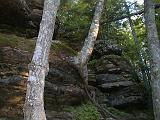 2000-07-06.trees.growing.rock.1.munising.mi.us.jpg