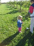 2007-10-09.farm.orchard.apple.17.seren-snyder-sandy.plymouth.mi.us.jpg