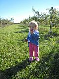 2007-10-09.farm.orchard.apple.19.seren-snyder.plymouth.mi.us.jpg