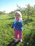 2007-10-09.farm.orchard.apple.20.fav.seren-snyder.plymouth.mi.us.jpg