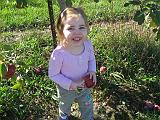 2007-10-09.farm.orchard.apple.24.alex.plymouth.mi.us.jpg
