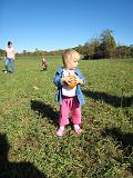 2007-10-09.farm.pumpkin_patch.31.seren-snyder.plymouth.mi.us.jpg