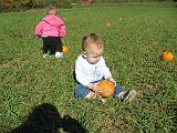 2007-10-09.farm.pumpkin_patch.40.elliot.plymouth.mi.us.jpg