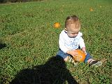 2007-10-09.farm.pumpkin_patch.41.elliot.plymouth.mi.us.jpg