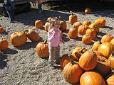 2007-10-09.farm.pumpkin_patch.52.alex.plymouth.mi.us.jpg
