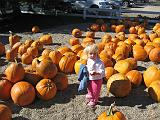 2007-10-09.farm.pumpkin_patch.53.seren-snyder.plymouth.mi.us.jpg