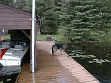 1999-08-24.dock.schone.1.lake_cabin.cook.mn.us.jpg