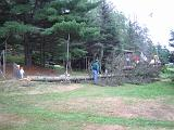 2005-08-21.dead_tree.cutting.down.6.felled.lake_cabin.cook.mn.us.jpg