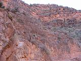 2007-11-17.canyon_embark_descent.bright_angel_trail.59.grand_canyon.az.us.jpg