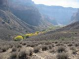 2007-11-17.canyon_return_ascent.bright_angel_trail.008.grand_canyon.az.us.jpg