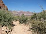 2007-11-17.canyon_return_ascent.bright_angel_trail.028.grand_canyon.az.us.jpg