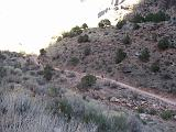 2007-11-17.canyon_return_ascent.bright_angel_trail.034.grand_canyon.az.us.jpg