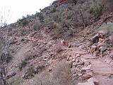 2007-11-17.canyon_return_ascent.bright_angel_trail.055.grand_canyon.az.us.jpg