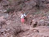 2007-11-17.canyon_return_ascent.bright_angel_trail.056.nessa-snyder.grand_canyon.az.us.jpg
