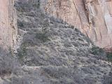 2007-11-17.canyon_return_ascent.bright_angel_trail.108.grand_canyon.az.us.jpg