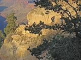 2007-11-17.canyon_return_ascent.bright_angel_trail.131.grand_canyon.az.us.jpg