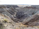 2007-11-18.blue_mesa.petrified_forest_badlands.06.holbrook.az.us.jpg