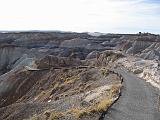 2007-11-18.blue_mesa.petrified_forest_badlands.08.holbrook.az.us.jpg