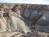 2007-11-18.blue_mesa.petrified_forest_badlands.11.holbrook.az.us.jpg