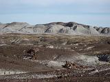 2007-11-18.crystal_forest.petrified_forest_badlands.09.holbrook.az.us.jpg