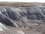 2007-11-18.crystal_forest.petrified_forest_badlands.11.holbrook.az.us.jpg