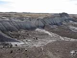 2007-11-18.crystal_forest.petrified_forest_badlands.12.holbrook.az.us.jpg