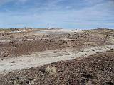 2007-11-18.crystal_forest.petrified_forest_badlands.16.holbrook.az.us.jpg
