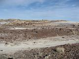 2007-11-18.crystal_forest.petrified_forest_badlands.17.holbrook.az.us.jpg