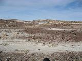 2007-11-18.crystal_forest.petrified_forest_badlands.18.holbrook.az.us.jpg