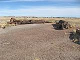 2007-11-18.giant_logs.petrified_forest_badlands.03.holbrook.az.us.jpg