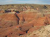 2007-11-18.painted_desert.petrified_forest_badlands.04.holbrook.az.us.jpg