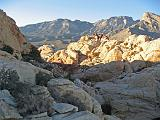 2007-11-24.calico_tanks_trail.49.red_rock_canyon.nv.us.jpg