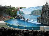 2004-07-09.safari_world.dolphins.1.bangkok.th.jpg