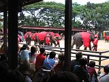 2004-07-10.tropical_gardens.elephant_show.3.nong_nooch.th.jpg