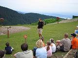 2004-07-14.grouse_mtn.raptor_show.perregrine_falcon.1.vancouver.ca.jpg