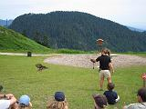 2004-07-14.grouse_mtn.raptor_show.red_tail_hawk.1.vancouver.ca.jpg