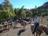 2000-09-03.saddle_up.after.brunch.horse_trail.nessa-nancy-snyder.flying_x_ranch.wheatland.wy.us.jpg